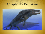 Chapter 15 study guide