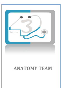 anatomy team