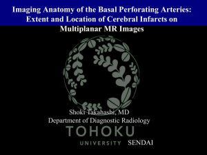 Imaging Anatomy of the Basal Perforating Arteries