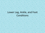 Ch 18 - Lower Leg Ankle and Foot Conditions