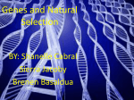 Genes and Natural Selection