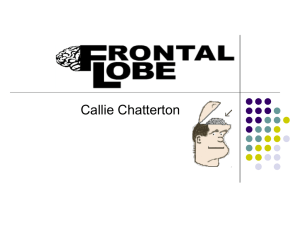 frontal lobe - Callie Chatterton