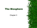 The Biosphere - Kania´s Science Page