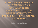 Structural elements and mechanisms involved in the transformation