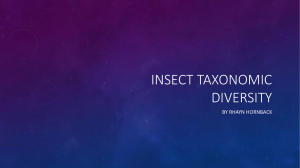 Insect taxonomic Diversity - Home