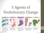 5 Agents of Evolutionary Change