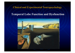 Temporal Lobe Function and Dysfunction