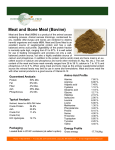 Meat and Bone Meal (Bovine)