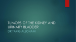 tumors of the kidney and urinary bladder