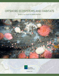 Offshore Ecosystems and Habitats