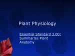 Horticulture I- Unit B 3.00 Plant Physiology