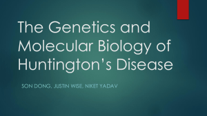 The Genetics and Molecular Biology of Huntington*s Disease