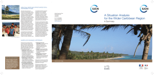 a situation analysis for the Wider caribbean region