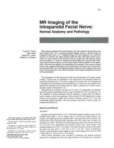 MR Imaging of the Intraparotid Facial Nerve
