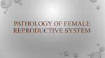 pathology of female reproductive system