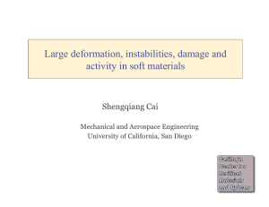 Large deformation, instabilities, damage and activity in soft materials