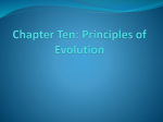Chapter Ten: Principles of Evolution