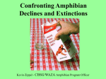 Confronting Amphibian Declines and Extinctions