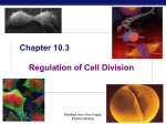 Chapter 12. Regulation of the Cell Cycle