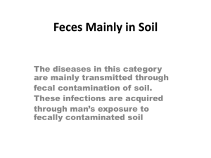 Feces Mainly in Soil