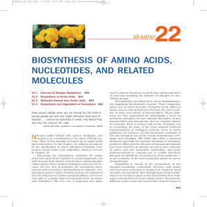 BIOSYNTHESIS OF AMINO ACIDS, NUCLEOTIDES, AND