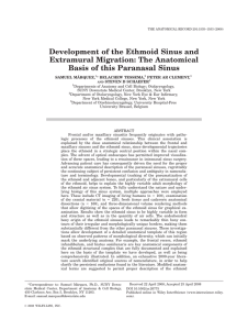 Development of the Ethmoid Sinus and Extramural Migration: The