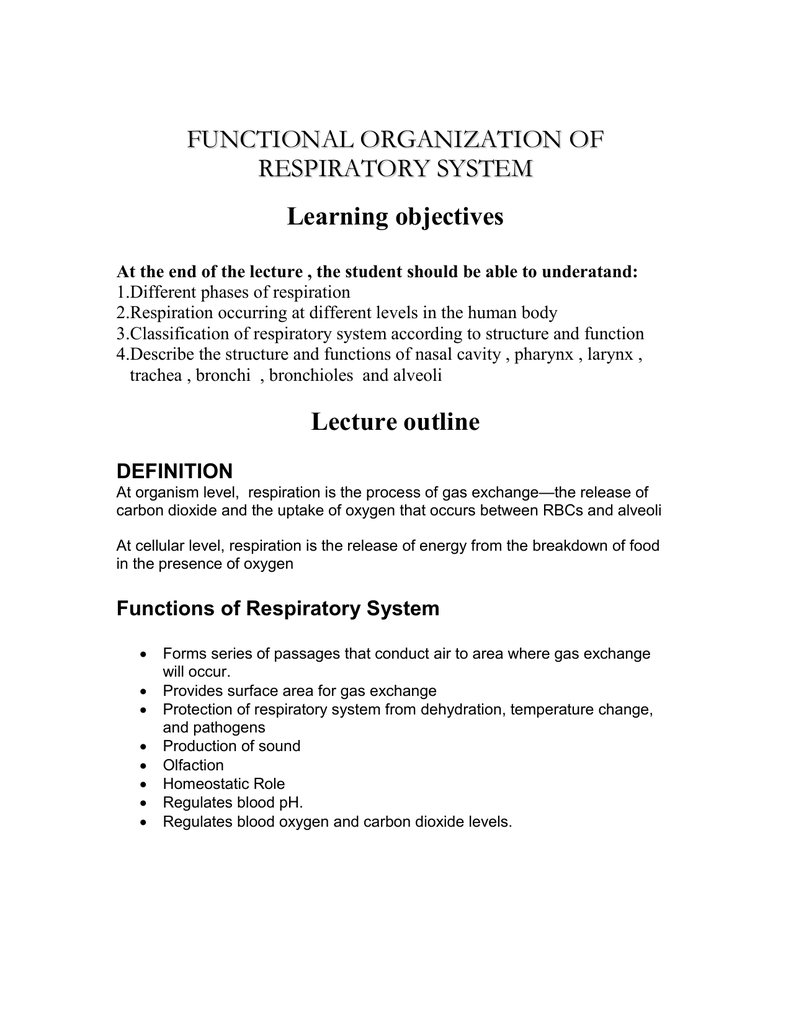 Functional Organization Of Respiratory System