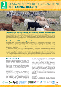 Sustainable wildlife management and animal health
