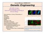 Genetic Engineering - USF :: Biological Sciences