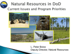 Natural Resources in DoD Current Issues and Program Priorities