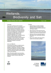 Microsoft Word - Wetland birds and salinity net.doc