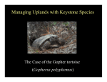 Managing Uplands with Keystone Species
