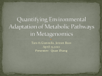 Quantifying Environmental Adaptation of Metabolic Pathways in