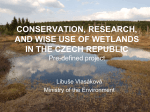 conservation, research, and wise use of wetlands in the czech republic