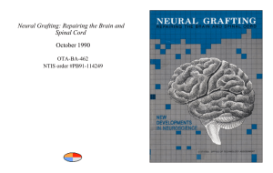 Neural Grafting: Repairing the Brain and Spinal Cord