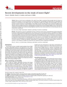 Recent developments in the study of insect flight