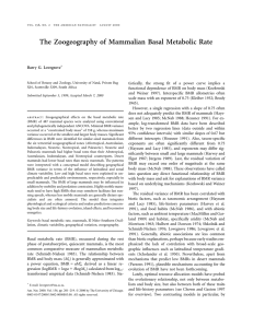 The Zoogeography of Mammalian Basal Metabolic Rate