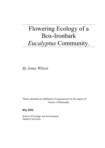 Flowering Ecology of a Box-Ironbark Eucalyptus Community.