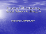 Application Of Evolutionary Neural Network Architecture