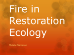Fire in Restoration Ecology