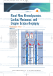 Blood Flow Hemodynamics, Cardiac Mechanics, and Doppler