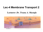 Chapter 12 - Membrane Transport