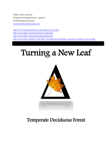 Turning a New Leaf Temperate Deciduous Forest Features of the