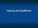Ear and hearing notes