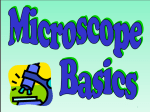 Microscope PP File