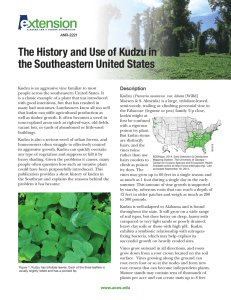 The History and Use of Kudzu in the Southeastern United States