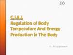 C.I.R.L Regulation of Body Temperature And Energy Production In