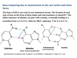 4 . The imino tautomer of adenine can pair with cytosine