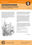 Natural Temperate Grassland - Environment, Planning and