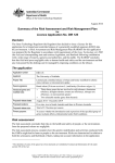 DIR 128 - Summary of the Risk Assessment and Risk Management